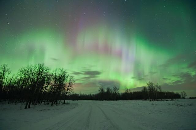 Northern Lights over Elk Island
